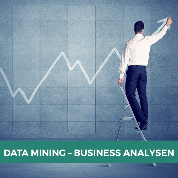 Data Mining und Business Analyse